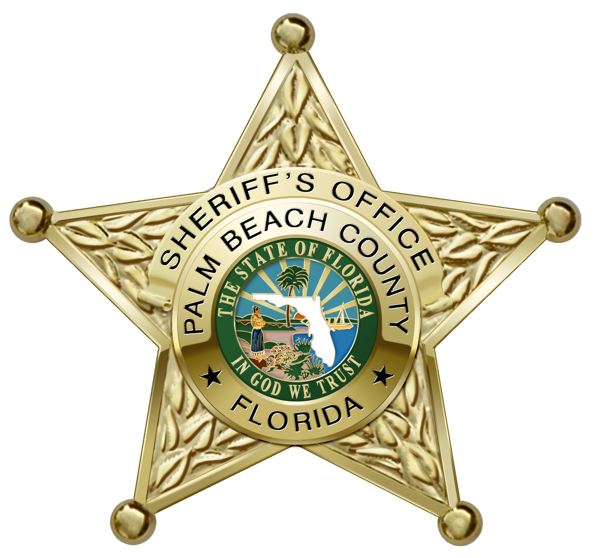Palm Beach County Sheriff Charter Flights - Able American Jets